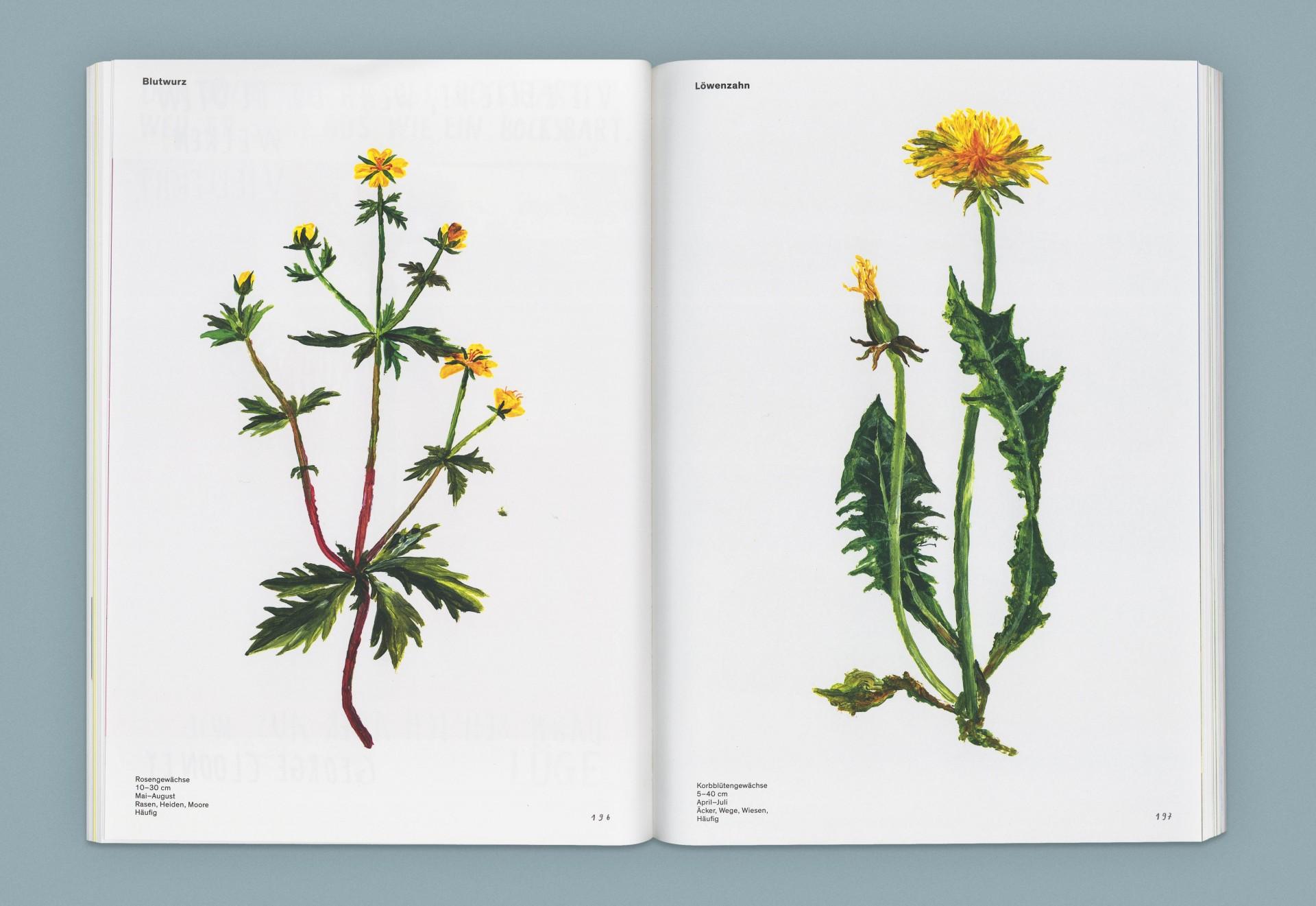 Felix Bork Oh, eine Pflanze!